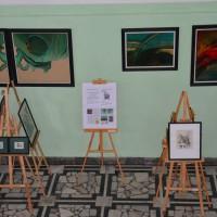 Wystawa Zygmunta Luksandra